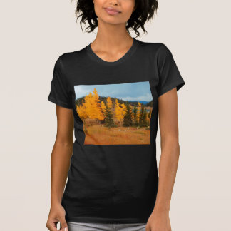 Grouping of aspen turning T-Shirt
