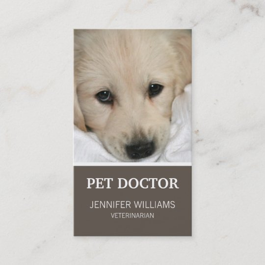 Groupon dog doctor business card zazzle groupon dog doctor business card colourmoves