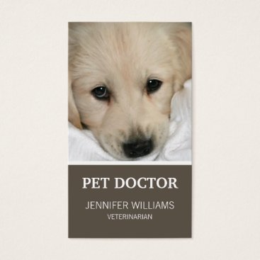 Professional Business Groupon Dog Doctor Business Card