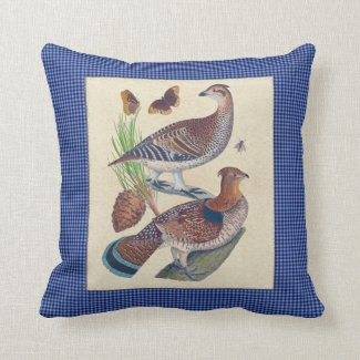 Grouse and Gingham Natural History Pillow 16x16