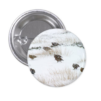 Grouse in the Snow Button Badge