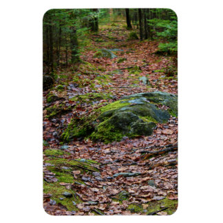 Grouse Trail Late Autumn 2015 Magnet