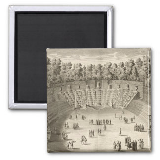 Grove of the Salle du Bal, Versailles, from 'Les P Magnet