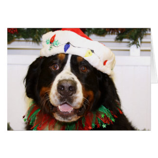 bernese mountain dog gifts bernese mountain dog gift ideas on zazzle. Black Bedroom Furniture Sets. Home Design Ideas
