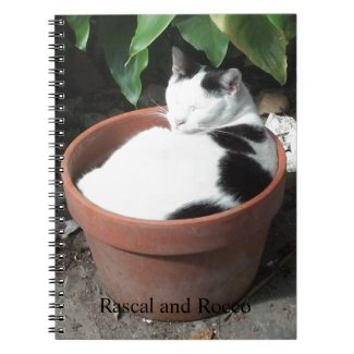 Grow a Cat Note Books cat lovers gifts cat gifts