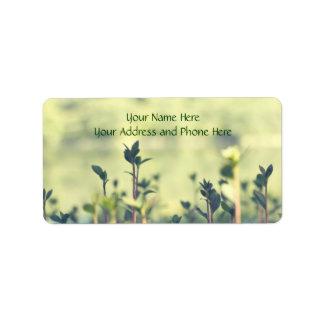 Grow A Little Each Day Inspirational Shoots Greens Label