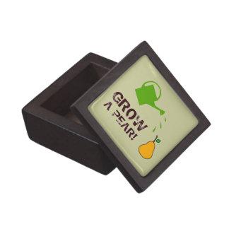 Grow a Pear! funny rebus humor (-many more colors) Keepsake Box
