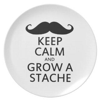 Grow a Stache Melamine Plate