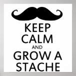 Grow a Stache Poster