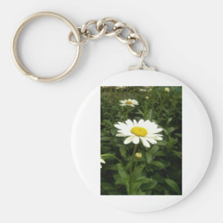 Grow, Eat and Live Green Keychain