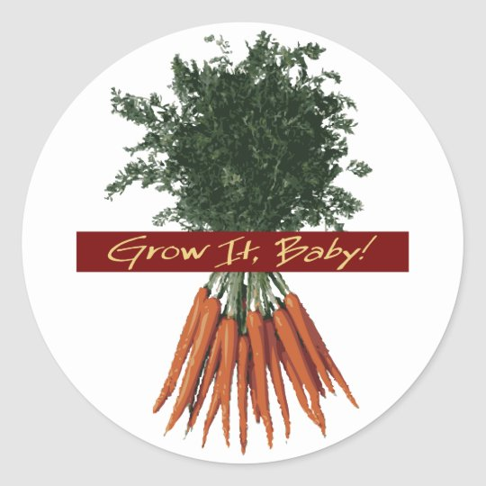 Grow It Baby! - Carrot Stickers