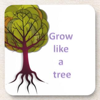 grow like a tree coaster