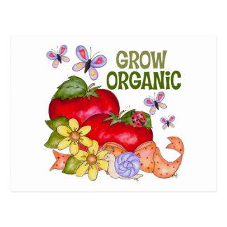 Grow Organic Postcards