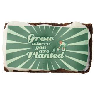 Grow where you are planted brownie