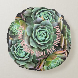 Grow Where You Are Planted Succulent Pillow Round Pillow