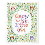 Grow wise little owl  Watercolor painting Art Photo