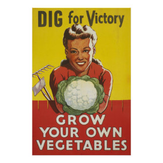 Grow Your  Own Food 24X36 WW1 Poster