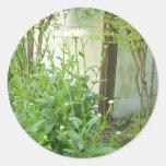 Growing Garden Classic Round Sticker