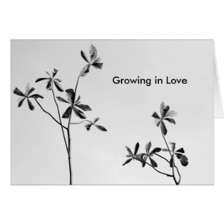 Growing in Love Card