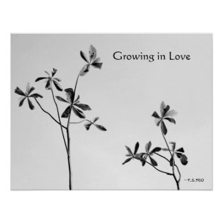 Growing in Love Posters