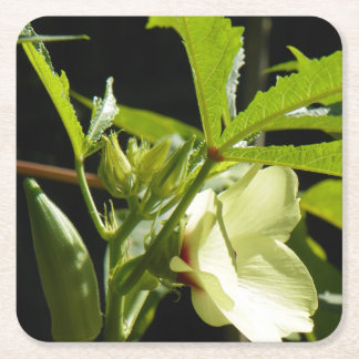 GROWING OKRA SQUARE PAPER COASTER