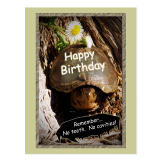 Growing Older Birthday Postcard