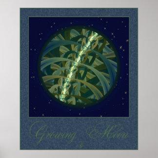 Growing Seed Moon Print