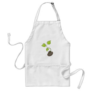 Growing Seedling Seed Plant Adult Apron