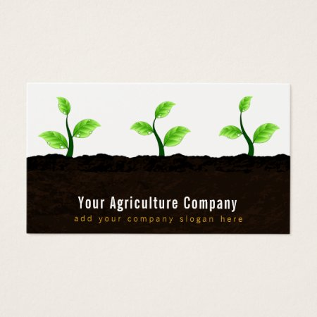 Seedlings Growing in Crop Rows in the Dirt Farmer Business Cards