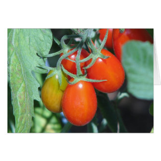 Growing Tomatoes Card