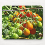Growing Tomatoes Mouse Pad