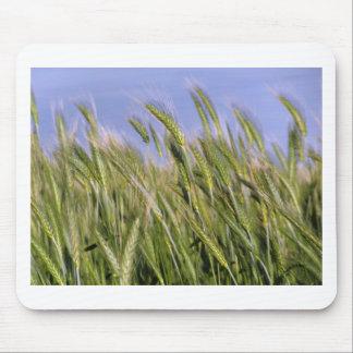 Growing Wheat Mousepad