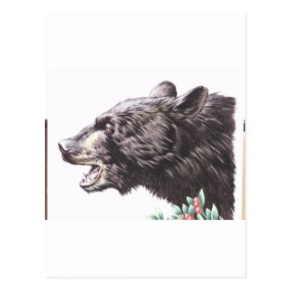 Growling Black Bear with Berries Postcard