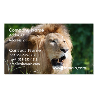 Growling Lion  Business Cards