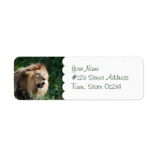 Growling Lion Mailing Labels