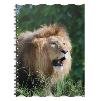 Growling Lion Notebook