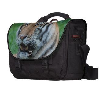 Growling Tiger Laptop Bag