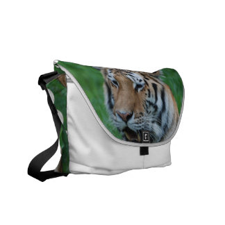 Growling Tiger Messenger Bag