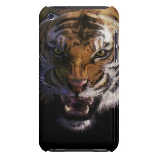Growling Tiger Wildlife Fine Art Mobile Phone Case iPod Case-Mate Cases