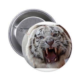 Growling White Tiger Pinback Button