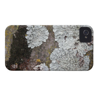 Growth iPhone 4 Case