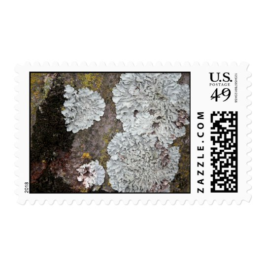Growth Postage