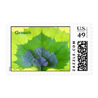 Growth Stamp