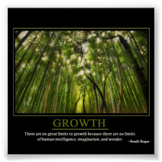 Growth Print