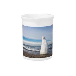 Groyne congelado en invierno en la orilla del mar jarras para bebida