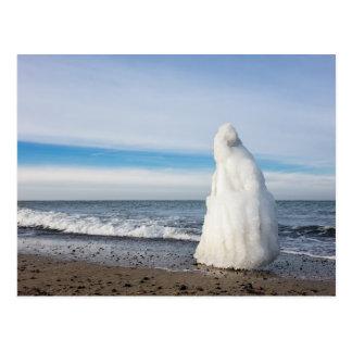 Groyne congelado en invierno en la orilla del mar postal