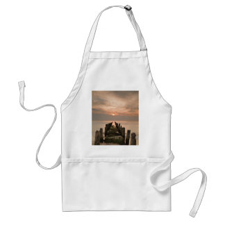 Groynes with sunset apron