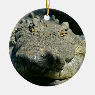 grrr gator chomp ceramic ornament