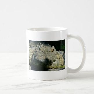 grrr gator chomp coffee mug