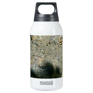 grrr gator chomp insulated water bottle